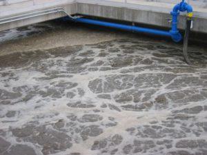Bioattivatore per acque reflue con cellulosa