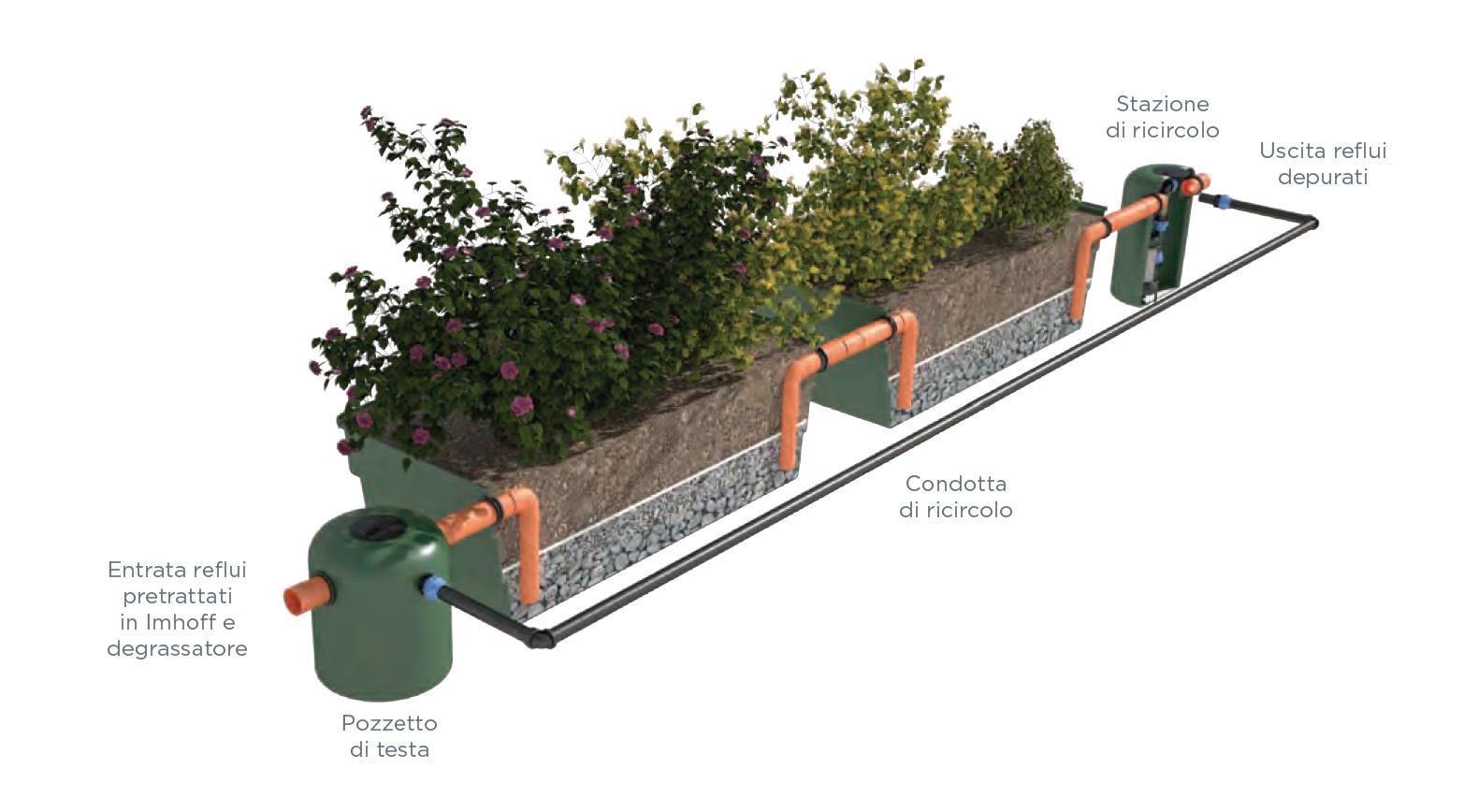 Impianto di fitodepurazione stam ecologia for Schema scarico acque reflue domestiche