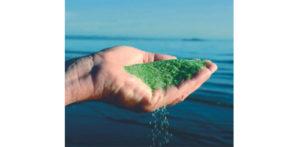 Filtrazione con vetro verde attivato